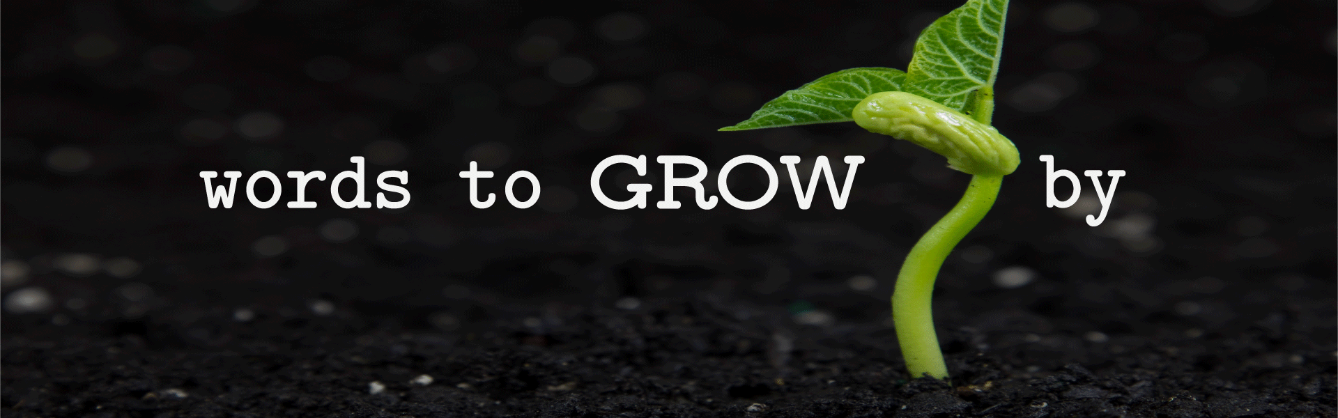 Words to GROW by Series
