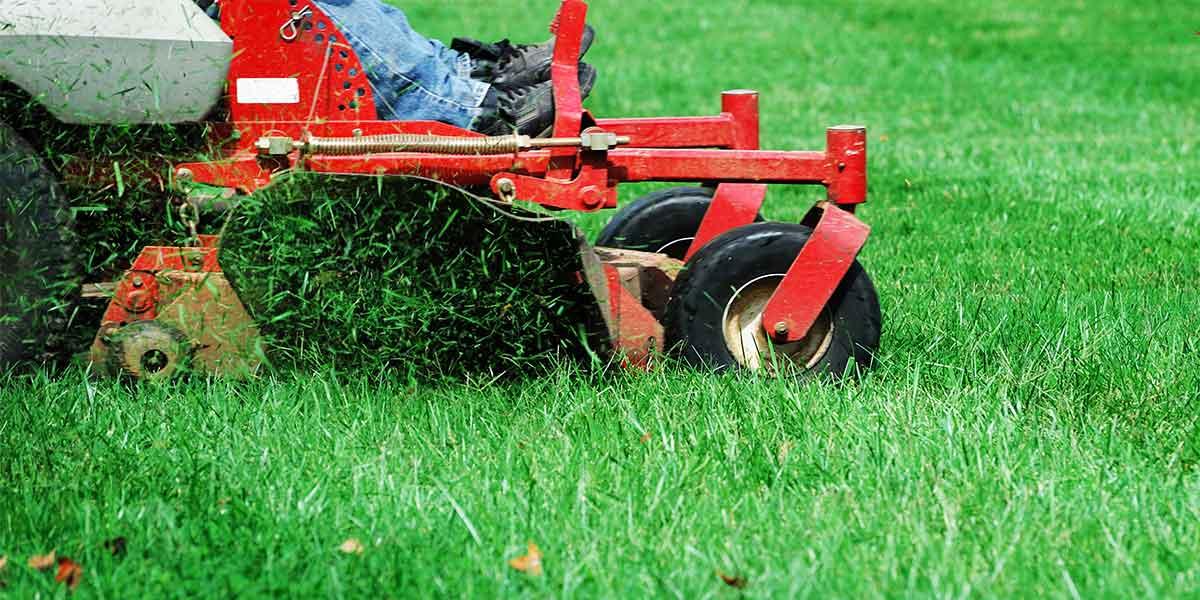 Lawn Mowing Team