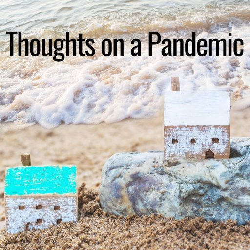 Thoughts on a Pandemic
