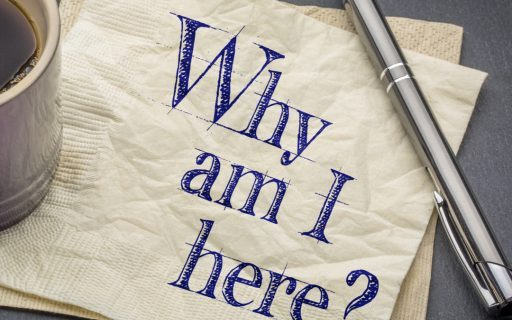 Why am I here_The Well